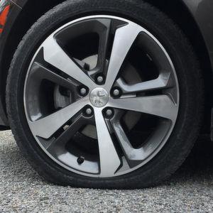 Reifen: Weiche Schale, harter Kern