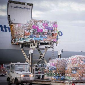 Rechtzeitig zum Valentinstag am 14. Februar fliegen 40 Mio. rote Rosen mit Lufthansa Cargo.