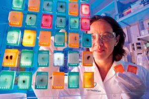Focus und Kununu haben gemeinsam die besten Arbeitgeber in Deutschland aus 21 Branchen ermittelt. Die Auszeichnung als bester Chemie- und Pharma-Arbeitgeber ging an Bayer.