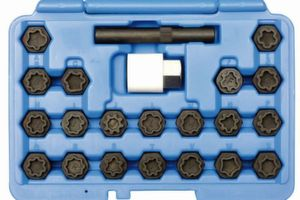 Mit den 20 verschiedenen VW-Adaptern kann der Monteur originale Felgensicherungen auch wieder festziehen.