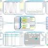 Percepio stellt Tracing-Werkzeug für Echtzeit-Windows vor