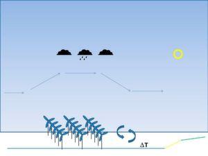 Windparks können dazu führen, dass die Luftströmung nach oben ausweicht: Kühlt die Luft ab, kann es zu vermehrter Wolken- und Niederschlagsbildung kommen.
