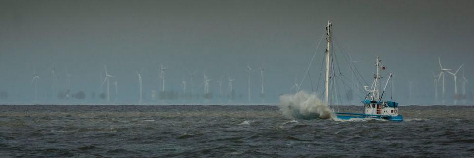 Je nach Wetterlage erreicht die Windgeschwindigkeit hinter Offshore-Parks erst nach zehn bis 100 km ihren ursprünglichen Wert: Mögliche Auswirkungen auf andere Parks und örtliches Klima untersucht das Projekt WIPAFF.