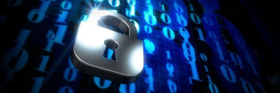 Das fahrlässige Verhalten von Angelstellten stellt laut der Studie das größte Risiko für die Endpoint-Security im Unternehmen dar.