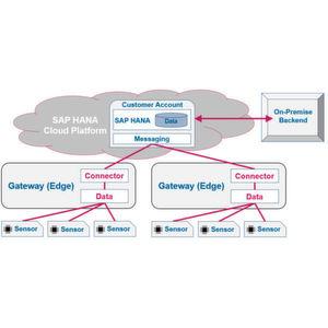 Massendaten werden an einer zentralen Stelle gesammelt und in der Cloud in Datenbanksystemen wie etwa SAP HANA S/4 erfasst, miteinander verknüpft und analysiert.