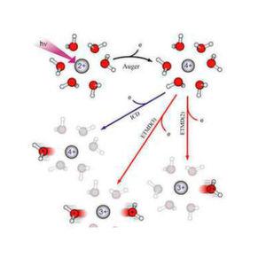 Mechanismus für Strahlenschäden durch Röntgenstrahlung – Die Absorption eines einzigen Röntgenphotons führt zunächst zu der Entstehung eines vierfach positiv geladenen Magnesiumions...