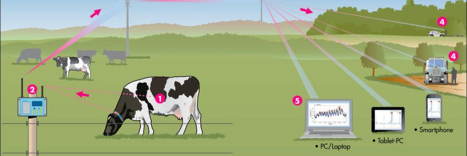Die Deutsche Telekom arbeitet an Anwendungsfeldern für seine Angebote im IoT-Umfeld. Ein mögliches Einsatzgebiet: die Landwirtschaft.