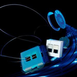 Das Lichtwellenleiter-Netz mit optischer Duplex-Polymerfaser eignet sich für Neu- und Nachinstallationen und soll eine einfache, schnelle, sichere und kostengünstige Montage ermöglichen.
