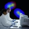 Auf dem Weg zur virtuellen Zelle