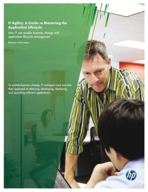 Planung, Entwicklung und Einsatz von Software-Anwendungen