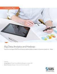 Big Data, Analytics and Hadoop