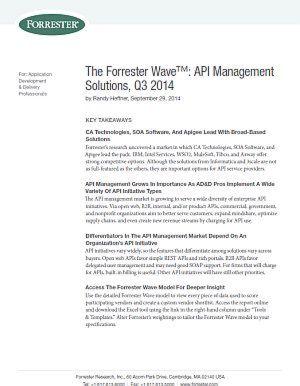API Management Solutions, Q3 2014