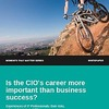 Is the CIO's career more important than business success?