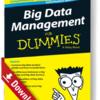 Big Data Management für Dummies