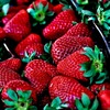Deutsche Erdbeeren sind weniger belastet als importierte