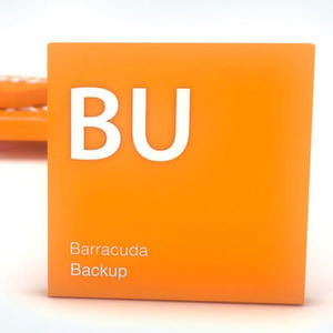 Barracuda Networks bringt Barracuda Backup auf Version 6.3.
