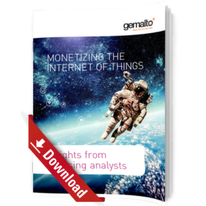 e-Book: Monetizing the Internet of Things
