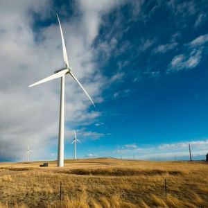 India To Get Electricity From Wind Energy In 5 Years