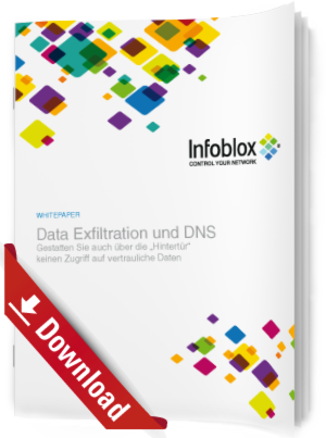 Data Exfiltration und DNS