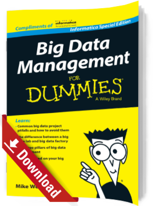 Big Data Management für Dummies