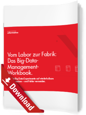 Das Big-Data-Management-Workbook