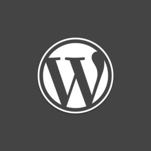 Plugins machen Wordpress angreifbar