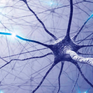 Detecting Signs of Multiple Sclerosis by Using Blood Samples