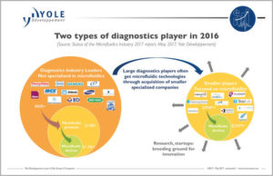 Two types of diagnostics players in 2016