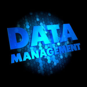 Informationsmanagement in Zeiten von Big Data