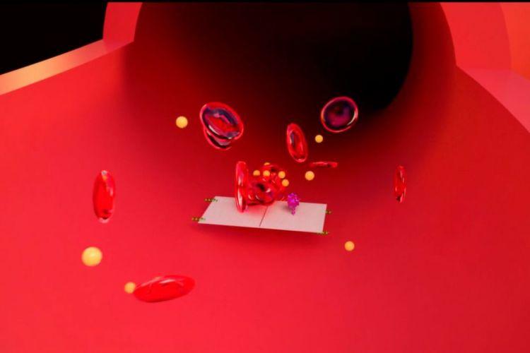 Bilder: Krebs-bekämpfende Nanobots werden zur Tumor-Jagd programmiert