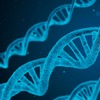 Harvard Medical School Launches New Program on Genetics