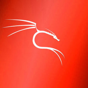 IT-Forensik mit Kali Linux