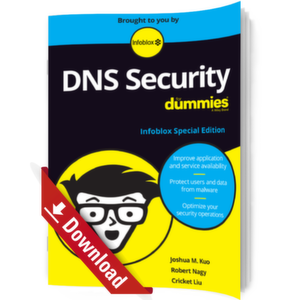 DNS Security for Dummies