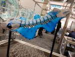 "Festo is showcasing its latest innovation ""the Bionic Fin Wave"" at Achema 2018. Inspired by the cuttlefish, the underwater robot is able to communicate with the outside world wirelessly and transmit data — such as the recorded sensor values for temperature and pressure — to a tablet. Its side fins are cast from silicone and do without struts or other support elements."