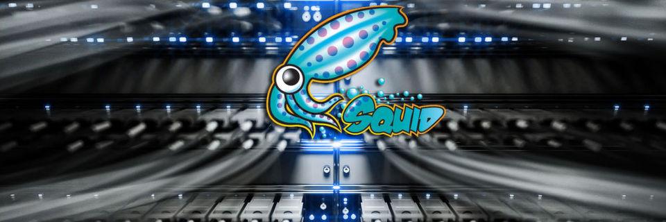Squid Proxy für sicheren Internetverkehr nutzen
