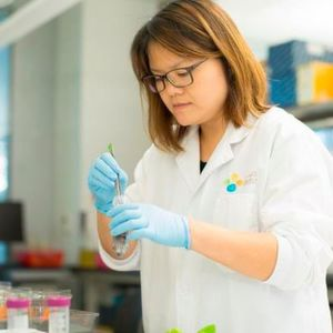 Assessing and improving the safety of treated wastewater is the current focus of Kaust Assistant Professor Peiying Hong's research.