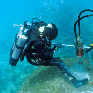 Coral Core Proves Decreasing pH Values in South Pacific