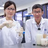 Researchers Turn Unpleasant Soy Pulp into Healthy Probiotic Drink