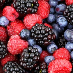 Wild berries were a sweet temptation for our ancestors. (sample image)