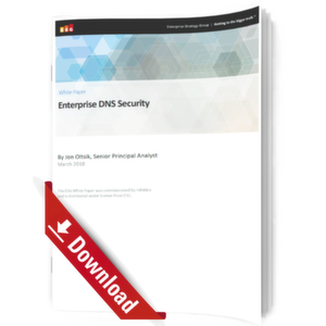 Enterprise DNS Security