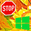 Upgrade-Stopp bei Windows 10