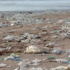Ocean Plastic Waste Causes Increasing Industry Uncertainty