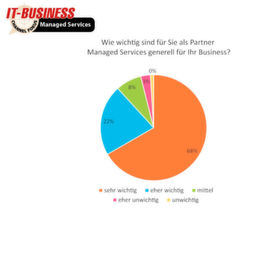 IT-BUSINESS Panel Managed Services