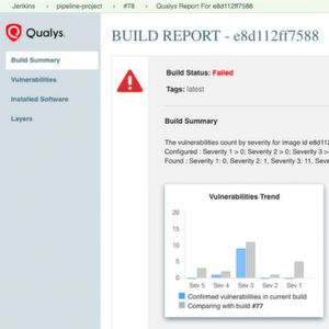 Ausbau der Container Security durch Qualys