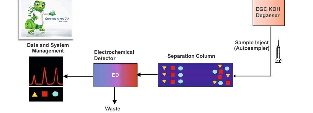 Fig 1 Schematic setup of electrolytic Eluent Generation