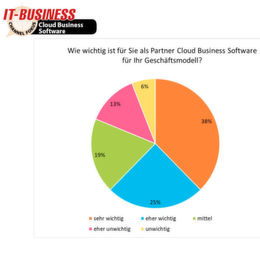 IT-BUSINESS Panel Cloud Business Software