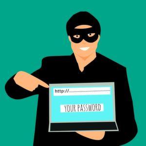 Für die Sicherheit verzichten Nutzer auf Online-Dienste