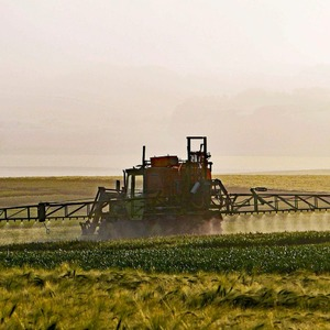 Glyphosate May Have Negative Impact on Phosphorus Levels