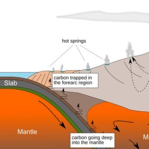 Natural Carbon Capturing by Microbes