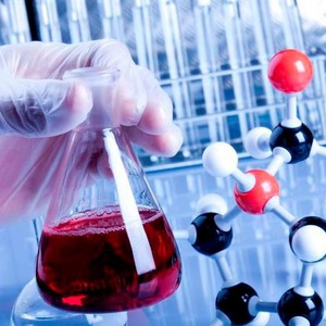 European Chemical Industry Focuses on Implementing 'Reach'